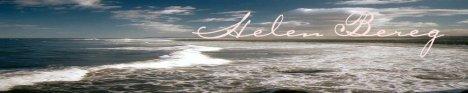 Helen Bereg banner