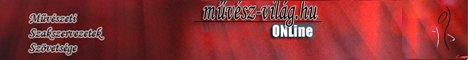 Művész Világ banner